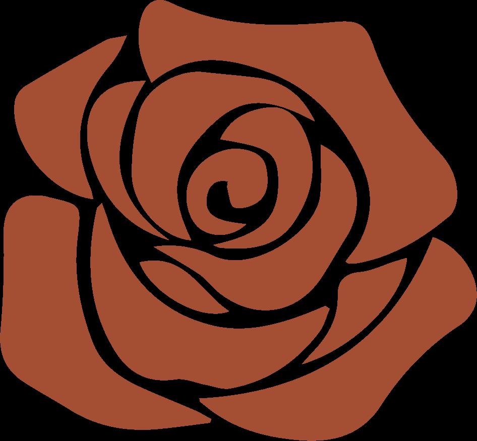san-marino-rose